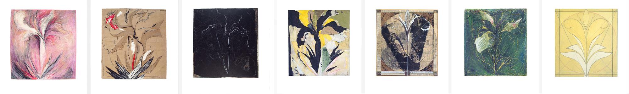 Iris, no 1 à 7, 1992 - 1993. Techniques mixtes sur papier fort, 46 x 287 cm.