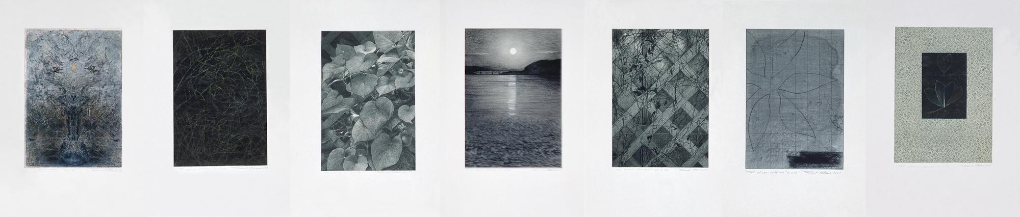 Les clairs-obscurs - Série B, 1998 - 2001. Techniques mixtes sur papier fort, 42,5 x 210 cm.