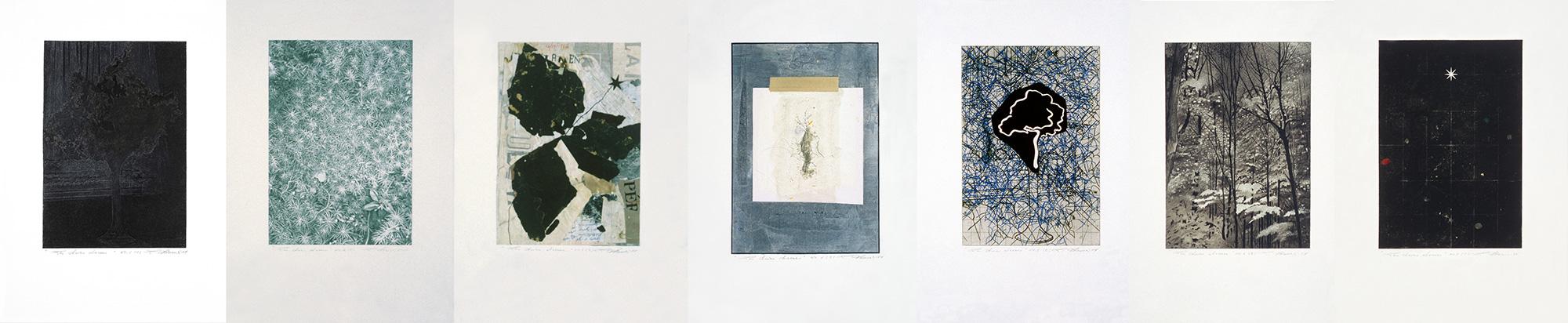 Les clairs-obscurs - Série C, 2004 - 2005. Techniques mixtes sur papier fort, 42,5 x 210 cm.
