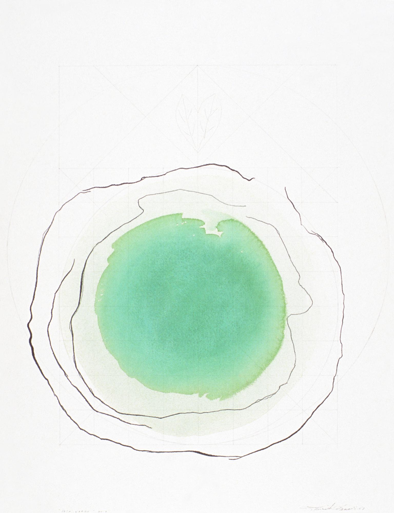 Rosa verde, 1997. Aquarelle et crayon sur papier, 76 x 56 cm.